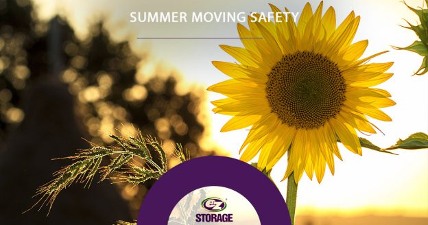 Summer-Moving-Safety
