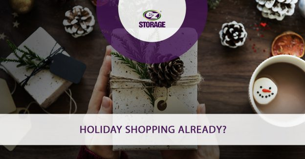 Holiday Shopping Already