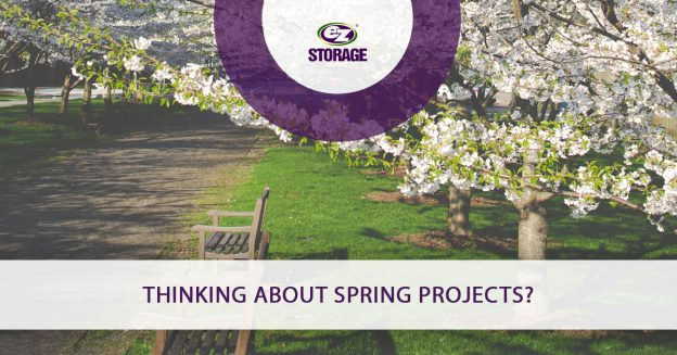 Thinking About Spring Projects_